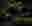 Saddleworth  © Matthew Murray